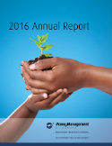 2016 Annual Report MMI