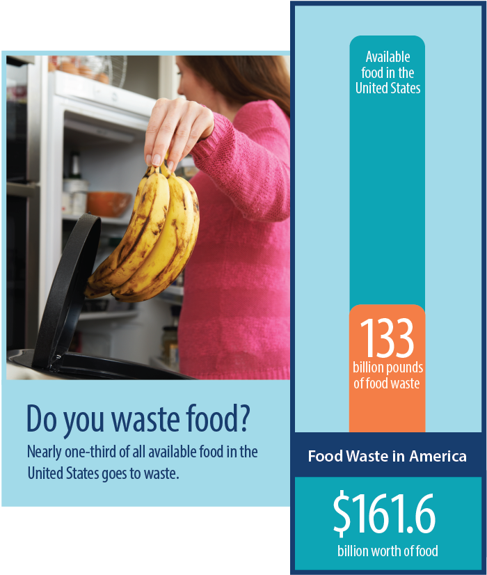 Food waste graphic